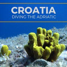 Diving in the Adriatic Sea Off the Coast of Croatia