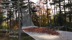 #トランポリン #枯葉 #fallen-leaves うわ!これ、楽しそう!(^^) 枯葉が一瞬、宙に浮いてるのがすごいですね。