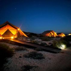 12 Australian Glamping Experiences (12 photos)  Hidden in the white sand dunes of Western Australia's Cape Range National Park, Sal Salis consists of five spacious wilderness tents that are located just metres from the water's edge and the beautiful Ningaloo Reef - www.salsalis.com.au
