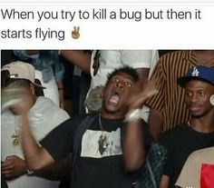 When you try to kill a bug