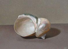 Sian Hopkinson, Shell. 21st century