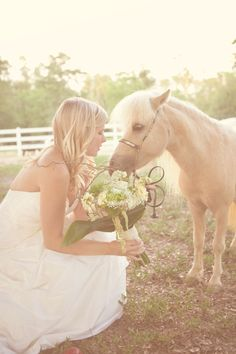photo shoot at a mini horse farm