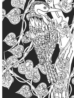 Amazon.com: Creative Haven Midnight Forest Coloring Book: Animal Designs on a Dramatic Black Background (Creative Haven Coloring Books) (0800759805006): Lindsey Boylan: Books
