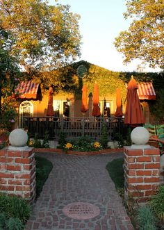 Alcove Cafe & Bakery (especially for Dinner and a Movie Under the Stars) in Los Feliz