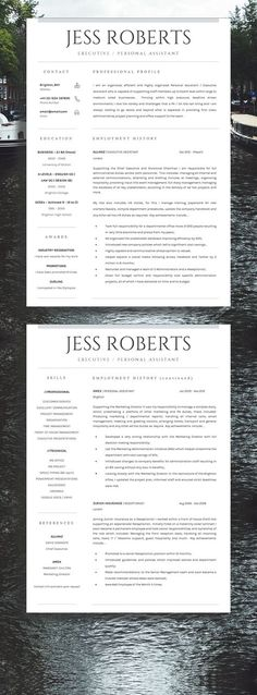 Animator resumes - Google Search Cool Resumes Pinterest - overseas aircraft mechanic sample resume