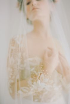 Bridal Portrait with soft veil Photography from Juniper Fine Art