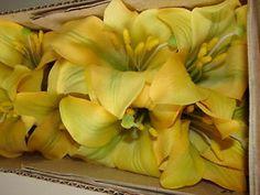 1 Karton Kunstblumen Lilien gelb 60cm Blumen Dekoration 12 Pflanzen neu in OVP!