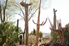 When Forrest E. Mars, Sr. (think: Snickers, Dove, Twix, M&M's) retired, he created Ethel M. Chocolates, a boutique chocolate shop named after his mother. But he also had another hobby: Cacti! Outside the shop, there's a four-acre botanical cactus garden which features over 300 species of desert plants. It's one of the world's largest collections of its kind.Pro tip: If you plan on buying chocolate to take home, be sure to check out the garden first so they don't melt while you're walking…