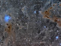 The Iris Nebula in a Field of Dust --- Jun. 24 --- Image Credit & Copyright: Mikel Martínez