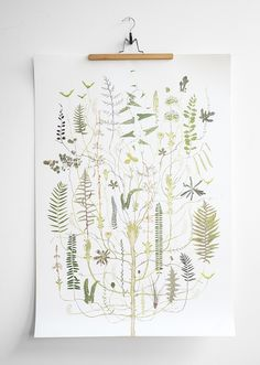 Green Flora Poster from Fine Little Day