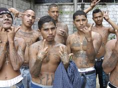 World's Most Dangerous Gang - Bing Images