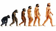 SEO e teoria dell'evoluzione di Charles Darwin - Studio Samo Web Social, Social Networks, Social Media Marketing, Marketing Strategies, Marketing Ideas, Content Marketing, Charles Darwin, Impacted Wisdom Teeth, Socialism