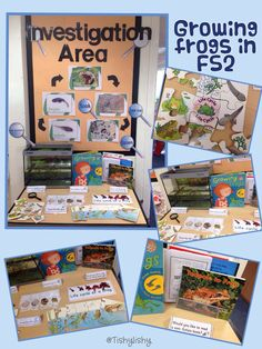 Early Years ideas from Tishylishy. Sharing photos, provision enhancements and outcomes from my EYFS class and the occasional share from others. Year 1 Classroom, Early Years Classroom, Eyfs Classroom, Classroom Displays, Early Years Science, Early Years Teacher, Cool Science Experiments, Science Activities, Science Area