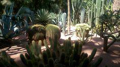 Jardines de Majorelle Marrakech