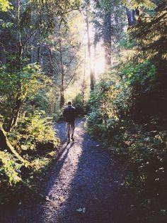 He likes hiking, and walking through the woods, while I take pics