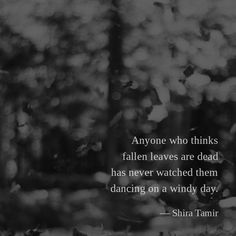 Anyone who thinks fallen leaves are dead has never watched them dancing on a windy day. — Shira Tamir