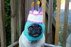 A Not-So-Happy Birthday