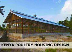 7 Best Poultry Housing Design Kenya Images In 2019