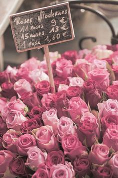 Pink roses at the Paris market.