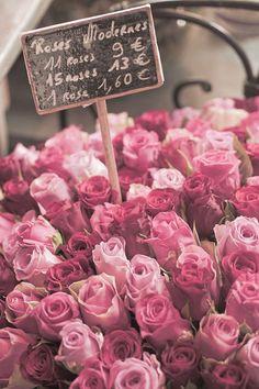 Pink roses at the Paris market.