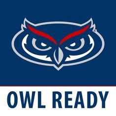 Florida Atlantic University Owls Florida sports teams