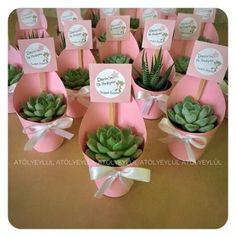 Trendy Baby Shower Souvenirs Recuerdos Succulent Favors - Domain Stop Idee Baby Shower, Baby Shower Favors, Baby Shower Themes, Baby Boy Shower, Baby Showers, Baby Shower Gifts, Shower Cake, Shower Ideas, Trendy Baby