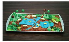 Great way to have students do a project to assess their understanding of habitats. Another take on the Edible Wetland activity to teach kids about wetland composition. Nature Activities, Science Activities, Educational Activities, Science Projects, School Projects, Science Ideas, Science Classroom, Teaching Science, Teaching Kids