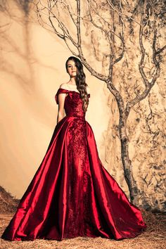 Stunning Evening Dresses By Ziad Nakad Fall/Winter 2014/2015 ~chicagobrunette~ jaglady