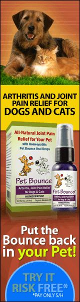 They deserve be treated Like Umans, Arthritis and Joint Pain relief For Dogs And Cats