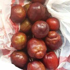 Governor plum delicious