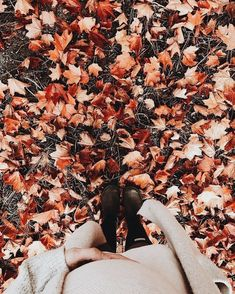 Find images and videos about autumn, fall and cozy on We Heart It - the app to get lost in what you love. Autumn Aesthetic, Fall Pictures, Autumn Photos, Seasons Of The Year, Autumn Photography, Hello Autumn, Autumn Inspiration, Fall Season, Fall Halloween
