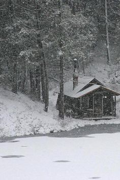Snug little Cabin In a Snow Storm