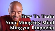 Mingyur Rinpoche Explaind how to train Our Monkey Mind, its mean meditate can be Everywhere & Everytime