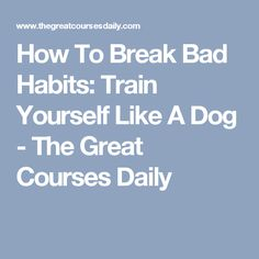 How To Break Bad Habits: Train Yourself Like A Dog - The Great Courses Daily