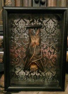 Gothic Art Bat Display Wall Decor