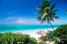 Sansibar – die würzigste Insel der Welt