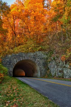 Great Smoky Mountains This tunnel is on the blue ridge parkway ive been thru it many times.i think theres 5 on this strech of road. Blue Ridge Parkway, The Places Youll Go, Places To Visit, Beautiful World, Beautiful Places, Beautiful Scenery, Autumn Scenery, All Nature, True Nature