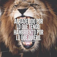 Autoayuda y Superacion Personal Mentor Of The Billion, Motivation Goals, Enjoy Your Life, Spanish Quotes, Just Do It, Animals And Pets, Lions, Good Times, Life Quotes