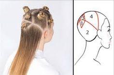 Resultado de imagen para divisiones basicas para cortar cabello