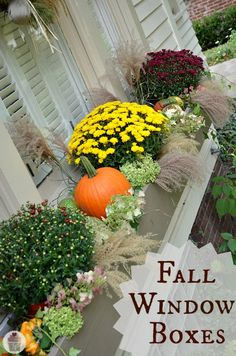How to Decorate Fall Window Boxes :: HoosierHomemade.com