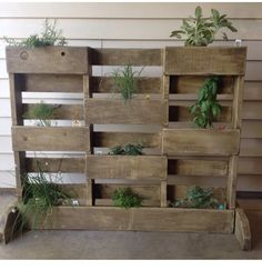 Herb planter box made from pallets.