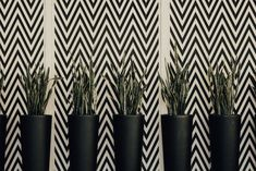 Wallpaper - zig zag it! Make a statement on your walls. Find out how to use wallpaper for interior design with Willow College Wallpaper, Wall Design, Interior Design Trends, Home Decor Wall Art, Trending Decor, Textures Patterns, Home Decor, Chalkboard Wall Diy, Home Decor Near Me