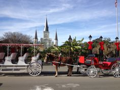 Jackson Square, New Orleans - decorated for Christmas!