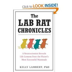 Lab Rat Chronicles, The: Amazon.co.uk: Kelly Lambert: Books