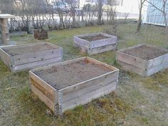 Raised vegetable beds made of pallet collars Pallet Collars, Bed Made From Pallets, Pallets Garden, Beds For Sale, Autumn Garden, Back Gardens, How To Make Bed, Raised Beds, Backyard