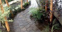 植栽 / タイルアプローチ Plants / Tiled Approach