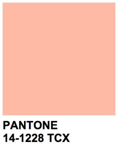 Journal about my day (my life so far and a book of lists possible index? Peach Color Palettes, Pantone Colour Palettes, Pantone Color, Peach Colors, Pantone Number, Material Board, Shades Of Peach, Color Swatches, Colour Schemes