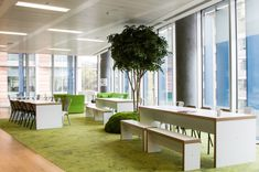 Peldon Rose Gives JustGiving Brand New, Multifunctional Offices Photo