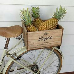 atlantic byron bay / sfgirlbybay oh how I would love a bike filled with pineapples The Grove Byron Bay, Ernst Hemingway, Photo Deco, Pineapple Express, Hippie Chic, Custom Bikes, Belle Photo, Summer Vibes, Yolo