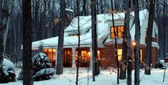 Sears Architects, Harbor Springs, cabin-style architecture, woods